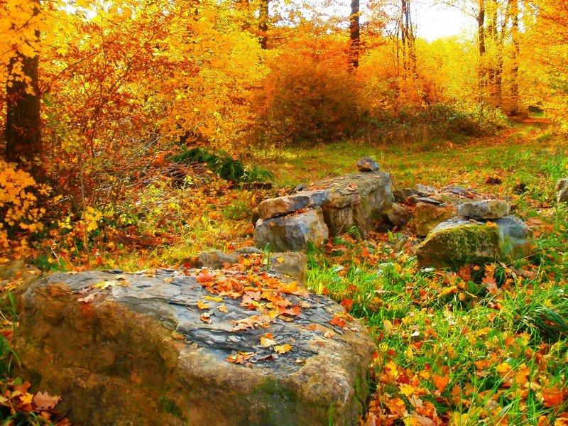 L'automne approche dans Effets photographiques einvaux1